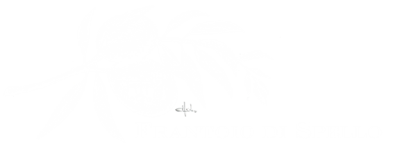 Frantoio di Spello Olio Extravergine di Oliva Dop Umbria